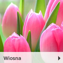 Wiosenne artykuły dekoracujne i florystyczne